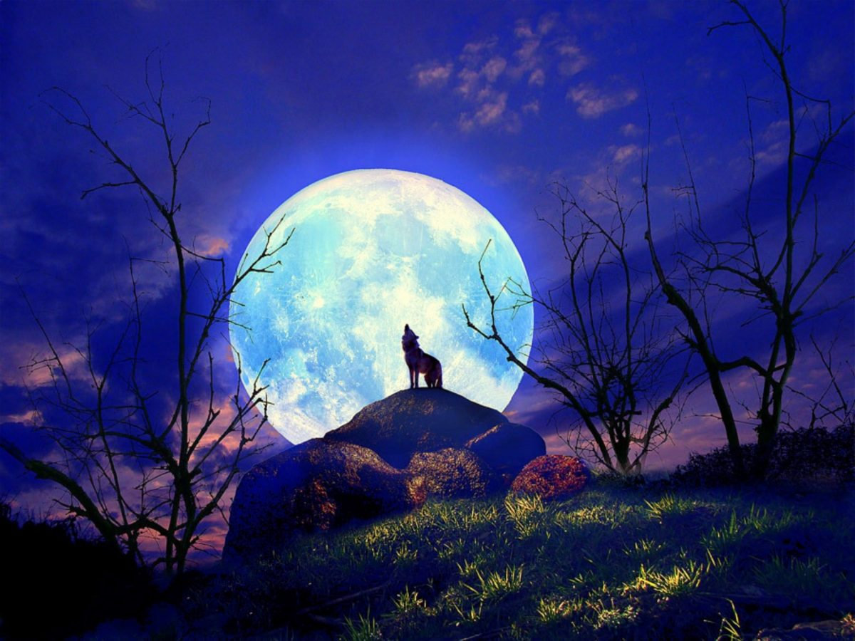Image result for Full moon in cancer