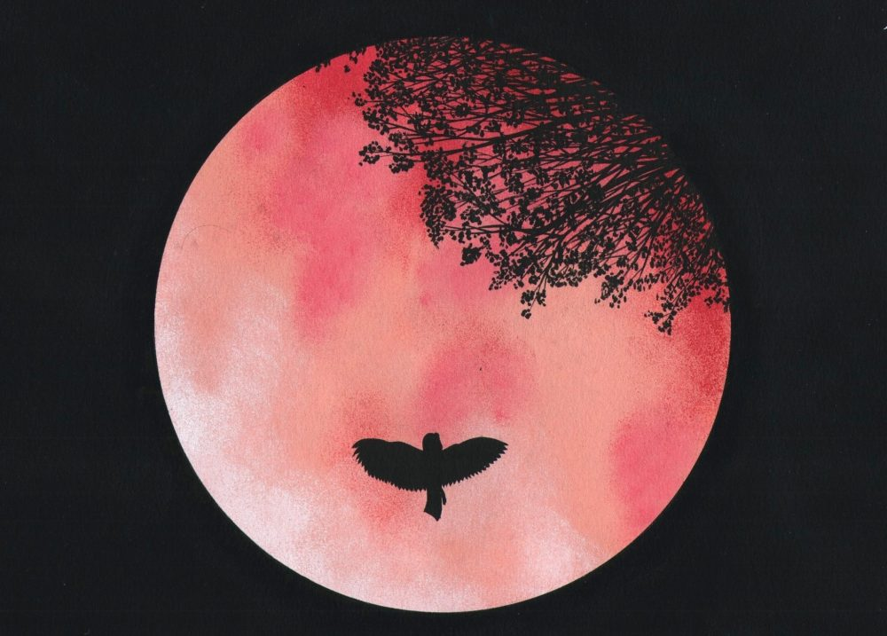 Pink moon 2017 full pink moon april 2017 how to catch What does it mean when the moon is pink