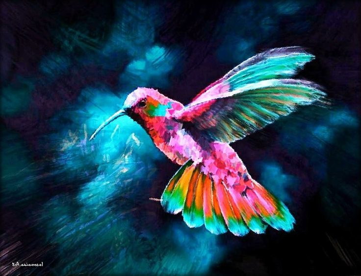 Symbolic And Spiritual Meaning Of Hummingbirds Conscious Reminder