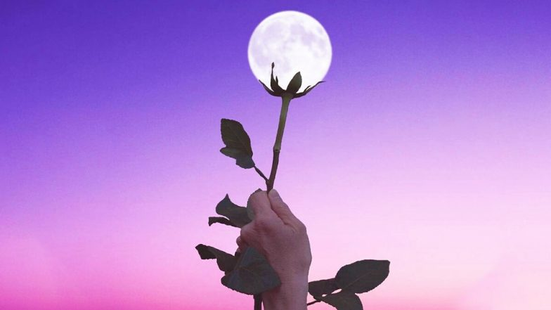 Image result for flower moon