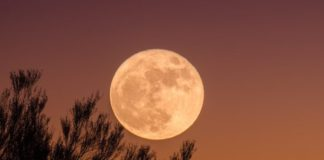 The Full Moon In Aries & How It Will Affect Each Sign